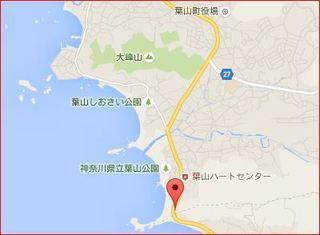 音羽の森.JPG
